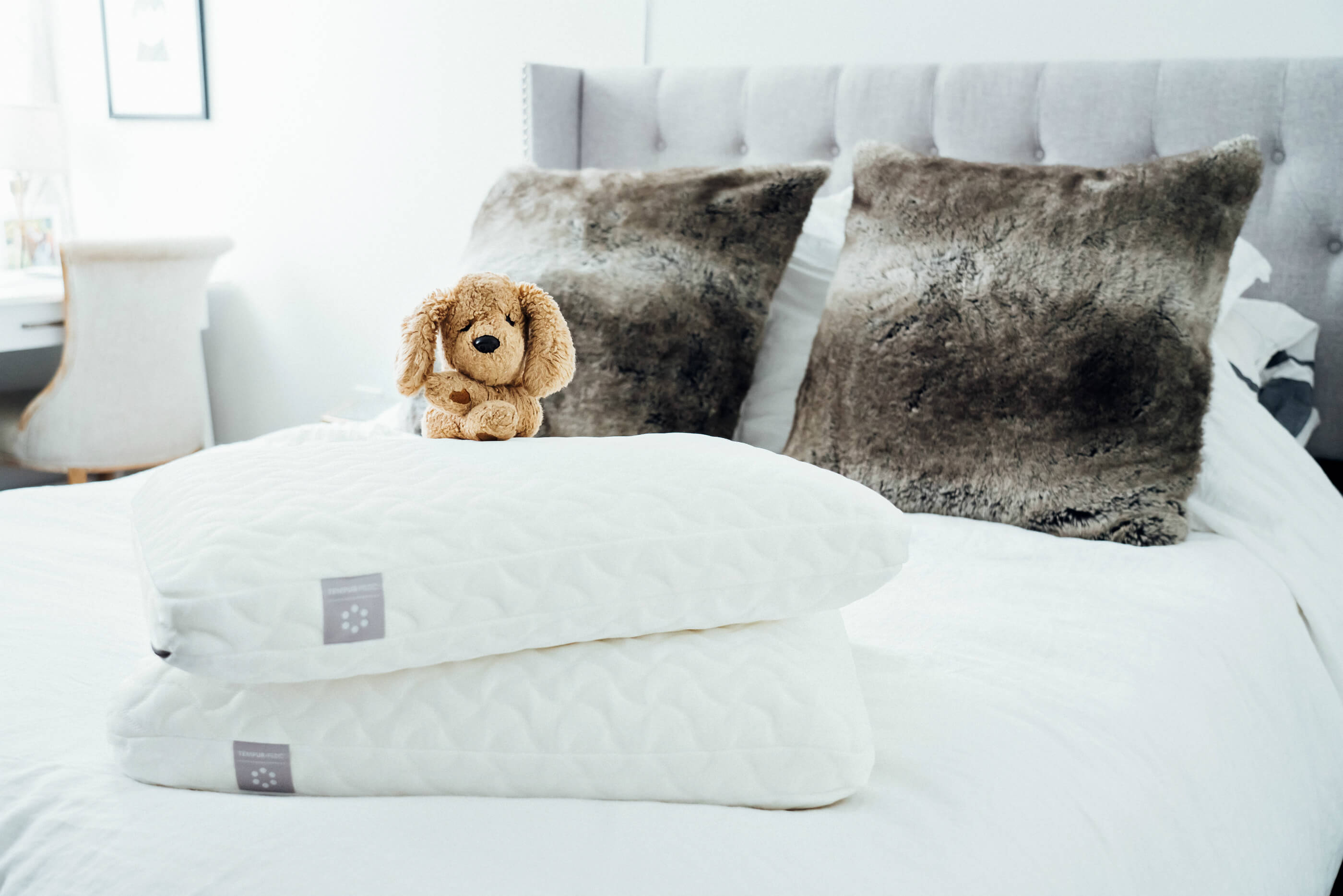 Tempur-Pedic TEMPUR-Cloud Pillow, GUND Vintage Muttsy Stuffed Dog, Tilden of To Be Bright