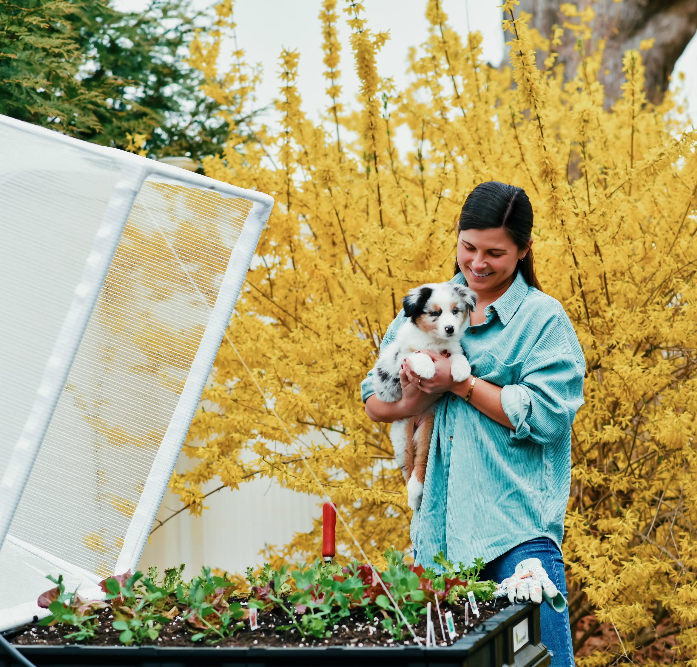 Medium-Standing Vegepod, Outdoor Gardening, Vegetable Gardening, Tilden of To Be Bright